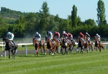 scommesse cavalli vincenti